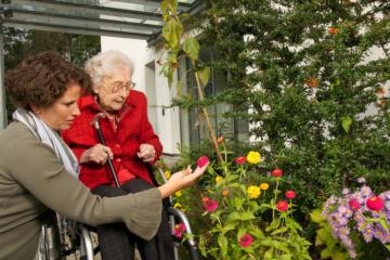 Junge und alte Frau im Rollstuhl betrachten Blumen.